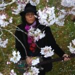 SHall_GGPark_Trussart_cherryBlossom